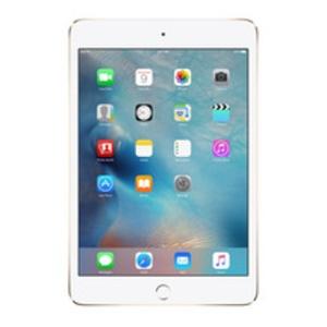iPad Mini 4 (4G Wifi)
