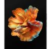 Ép, Thay mặt kính Xiaomi Mi Mix Fold chính hãng